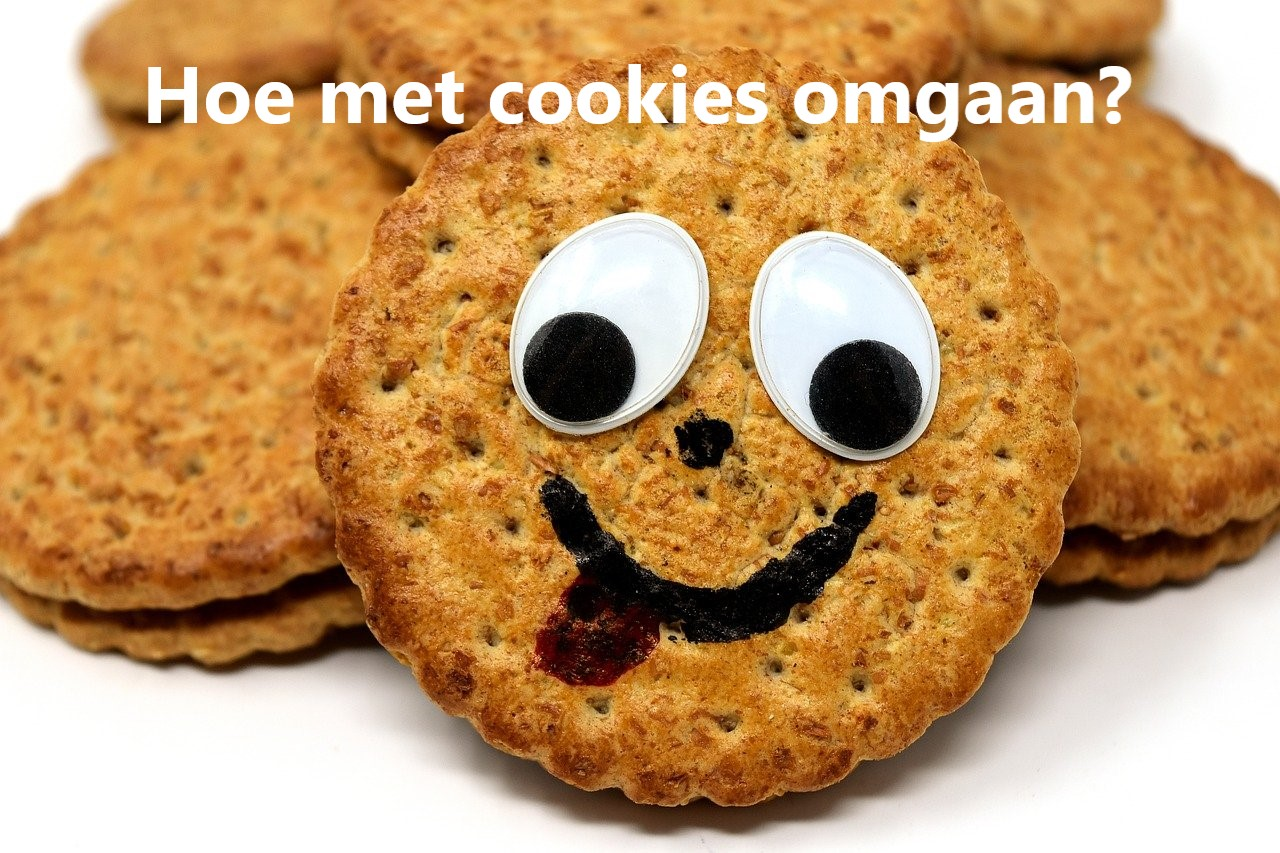 Hoe moet je met cookies omgaan